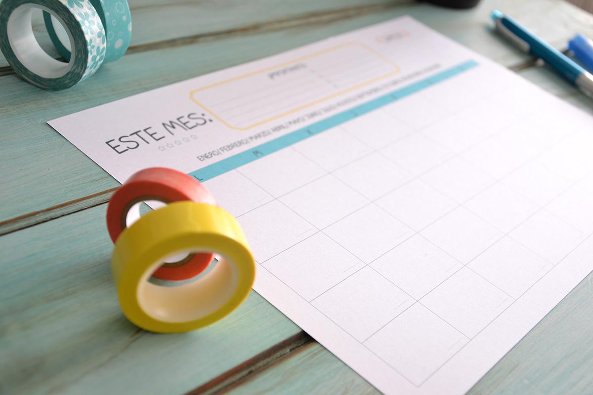 detalle de organizador planificador
