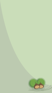 Castañas 2 1080x1920